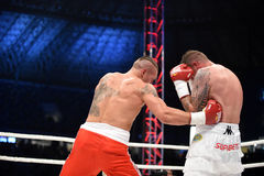 Fight for champions belt. Lviv, UKRAINE -October 4, 2014 :  Oleksandr Usyk (Ukraine) and South African Daniel Bruwer in the ring during fight for WBO Inter royalty free stock photography