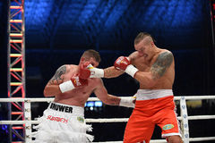 Fight for champions belt. Lviv, UKRAINE -October 4, 2014 : Oleksandr Usyk (Ukraine) and South African Daniel Bruwer in the ring during fight for WBO Inter stock images