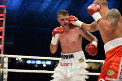 Fight for champions belt. Lviv, UKRAINE -October 4, 2014 : Oleksandr Usyk (Ukraine) and South African Daniel Bruwer in the ring during fight for WBO Inter royalty free stock photos