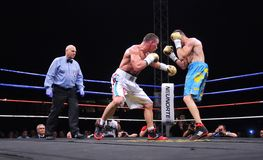 Fight for the European IBF championship Royalty Free Stock Photography