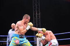 Fight for the European IBF championship Stock Photography