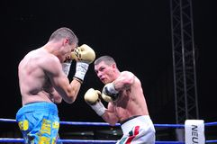Fight for the European IBF championship Royalty Free Stock Image
