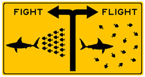 Fight or flight. Choice between engaging the fight or fleeing from it Stock Images