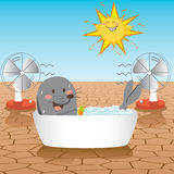 Fight Global Warming. Seal fighting global warming desert inside a bathtub filled with ice cubes Royalty Free Stock Photo