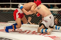 Fight in mixed martial arts Stock Images