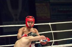 Fight in mixed martial arts Royalty Free Stock Photos