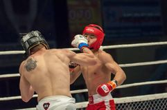 Fight in mixed martial arts Royalty Free Stock Images