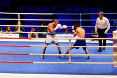 Fight between participans of boxing match WSB Stock Photos
