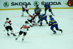Fight for the puck at the faceoff. Fight for the puck at the face-off between the hockey national team of Ukraine and national team of Hungary royalty free stock image