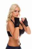 Fight Stance Royalty Free Stock Photography