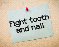 Fight tooth and nail Royalty Free Stock Photos
