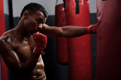 Fight training Stock Images