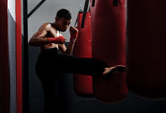 Fight training Royalty Free Stock Photos