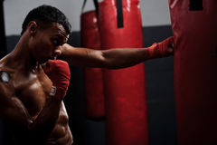 Fight training Royalty Free Stock Images