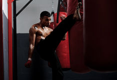 Fight training Stock Photos