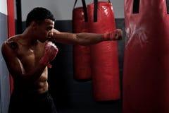 Fight Training Royalty Free Stock Photo