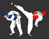 Fight between two taekwondo fighters . Self defense, defence art exercising concept. Fight between two taekwondo fighters  illustration isolated. Sparring on Stock Photo