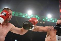 Fight for WBO Inter-Continental cruiserweight champion belt. Kyiv, UKRAINE - December 13, 2014 : Oleksandr Usyk (Ukraine) and South African Danie Venter in the Stock Photo