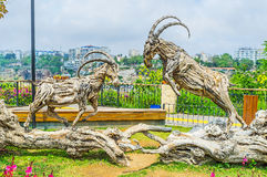 The fight of wooden ibexes. The wooden sculpture in Mermerli park depicts the fight of ibexes, Antalya, Turkey royalty free stock photography