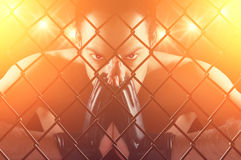 Fighter. Cage fighter concentrating , staring at the camera , dramatic lighting Royalty Free Stock Photography