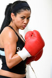 Fighter. Beautiful  fighter girl training in a gym Royalty Free Stock Photos