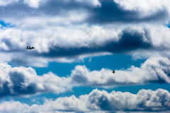 Fighter aircraft and the bird on the cloudy sky background Royalty Free Stock Photography