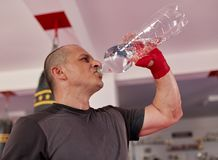 Fighter drinking water royalty free stock photography