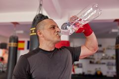 Fighter drinking water stock photo