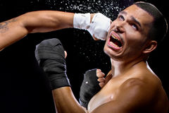 Fighter Getting Knocked Out Stock Image