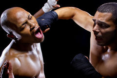 Fighter Getting Knocked Out Royalty Free Stock Image