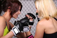 Fighter Girls Royalty Free Stock Image