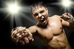Fighter Royalty Free Stock Images