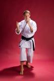 fighter karate Στοκ εικόνες με δικαίωμα ελεύθερης χρήσης