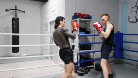 Fighter men in boxing gloves training punches on ring in sport club. Boxer man training kicks to body with personal. Coach in fight club. Boxing exercise stock video footage