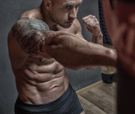 Fighter mixed martial arts training in the gym. Without gloves in short shorts Stock Images