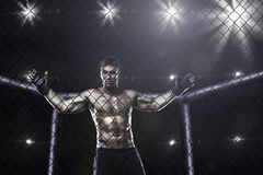 Fighter in mma cage arena. Front view stock photo