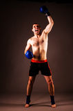 Fighter. Mma fighter with hands up on gray background royalty free stock photography