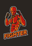 Fighter mma pose. Mixed martial art fighter pose Royalty Free Stock Image