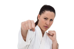 Fighter performing karate stance Royalty Free Stock Photography