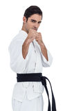 Fighter performing karate stance Stock Image