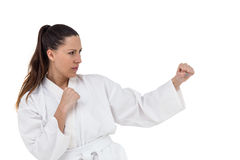 Fighter performing karate stance Stock Photography