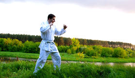 Fighter practicing martial arts Royalty Free Stock Image