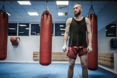 Fighter preparing for training, wrapping hands with boxing wraps Royalty Free Stock Photos