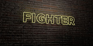 FIGHTER -Realistic Neon Sign on Brick Wall background - 3D rendered royalty free stock image Royalty Free Stock Images