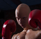 Fighter in red gloves Royalty Free Stock Photos