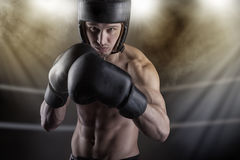 Fighter in the ring Stock Photo