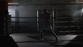 Fighter shadowboxing on training ring. Professional fighter. Male boxer in training sportswear, an exercise in sports. Hall, fight with a shadow in ring, Strike stock footage