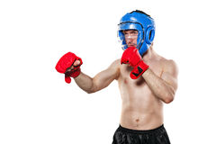 Fighter in sports helmet and gloves Stock Images