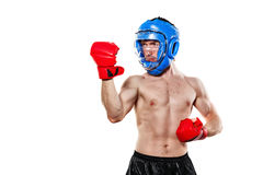 Fighter in sports helmet and gloves Royalty Free Stock Image