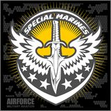 Fighter squadron airforce - military aviation. Vector illustration Royalty Free Stock Image